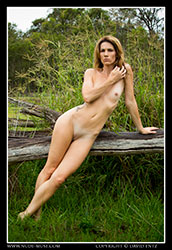 cherry-brandy nude on log