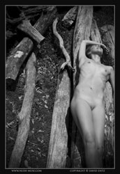 mia nude on logs